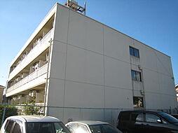 ドムス千代田 馬酔木館[216号室]の外観