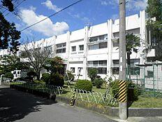 中学校那賀中学校まで822m
