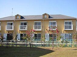 稲富ハイツI[1階]の外観