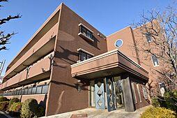 泉北高速鉄道 栂・美木多駅 徒歩19分の賃貸マンション