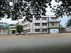 小学校東村山市立秋津小学校まで800m