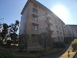 千葉県柏市大津ケ丘1丁目の賃貸マンションの外観