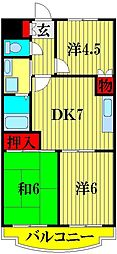 埼玉県越谷市千間台東2丁目の賃貸マンションの間取り