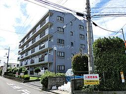 埼玉県上尾市二ツ宮の賃貸マンションの外観
