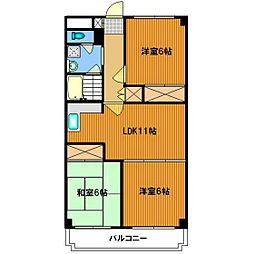東京都杉並区善福寺4丁目の賃貸マンションの間取り