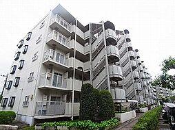 千葉県松戸市八ケ崎2丁目の賃貸マンションの外観