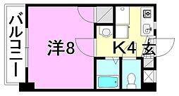 エディフィシオ藤[203 号室号室]の間取り