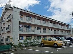 愛媛県松山市東石井3丁目の賃貸マンションの外観