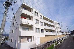 コーポ新田[4階]の外観