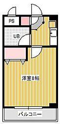 スタービレッジ新松戸[3階]の間取り