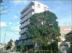 岡山県岡山市北区絵図町の賃貸マンションの外観