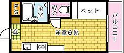 ネットビル4--[203号室]の間取り