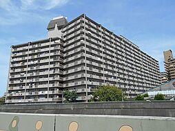マンション(八戸ノ里駅から徒歩10分、3LDK、980万円)