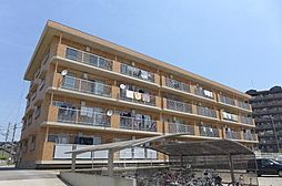 愛知県安城市横山町寺下の賃貸マンションの外観