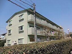 愛知県安城市横山町下毛賀知の賃貸マンションの外観