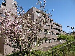 パルナスG[2階]の外観