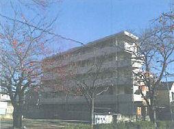 愛知県名古屋市守山区森孝2丁目の賃貸マンションの外観