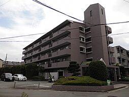 兵庫県尼崎市武庫之荘東1丁目の賃貸マンションの外観