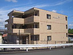 静岡県掛川市下俣南1丁目の賃貸マンションの外観