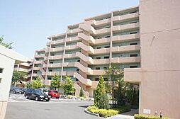 千葉県船橋市前貝塚町の賃貸マンションの外観