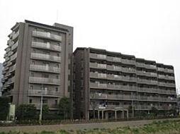 埼玉県戸田市美女木東1丁目の賃貸マンションの外観