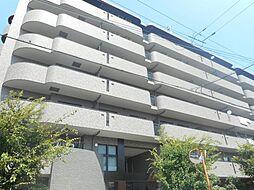 大阪府泉大津市北豊中町1の賃貸マンションの外観