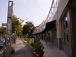 KII-OKASAN B.二番館[4階]の外観