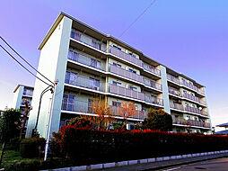 埼玉県所沢市中新井5丁目の賃貸マンションの外観
