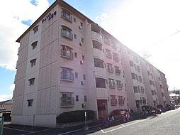 大阪府八尾市南久宝寺1丁目の賃貸マンションの外観