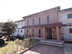 新潟県新発田市五十公野の賃貸マンションの外観
