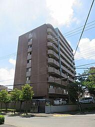 Sunsky 〜サンスカイ〜[10階]の外観