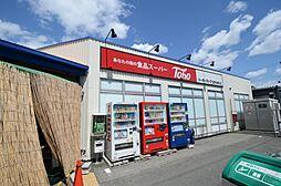 [テラスハウス] 兵庫県宝塚市向月町 の賃貸【/】の外観