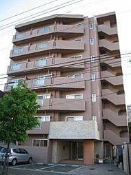 コートロティ円山[3階]の外観