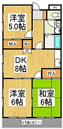 セゾンコート1-9[1階]の間取り