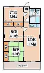 三京ビル[6階]の間取り