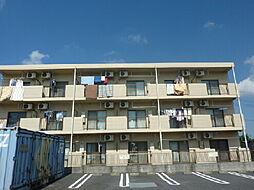 サニーサイドサンフィート[306号室]の外観