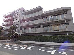 コスモ武蔵浦和プロシィード[408号室]の外観