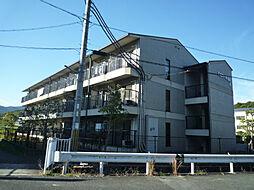 TOコーポ石山A棟[1階]の外観