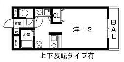 光南コスモセブン[203号室号室]の間取り