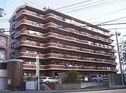 アメニティハイツ杏栄館[707号室]の外観