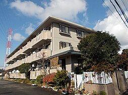 ガーデンハイツ小沢[306号室]の外観