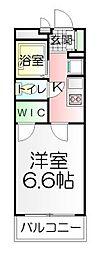 千葉県松戸市紙敷1の賃貸マンションの間取り