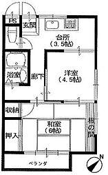 千葉県市川市新井3丁目の賃貸マンションの間取り