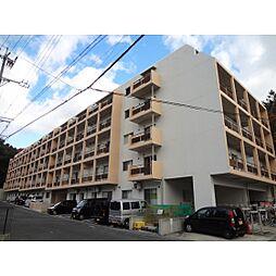 静岡県浜松市中区幸3丁目の賃貸マンションの外観