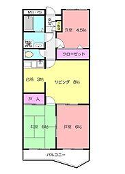 キャクタス柿の木台[2階]の間取り