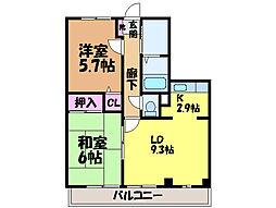 愛媛県松山市東野3丁目の賃貸マンションの間取り