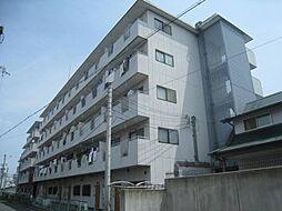 大阪府東大阪市新庄1丁目の賃貸マンションの外観