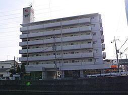 キャッスルコートイワキ[3階]の外観