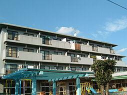 埼玉県さいたま市浦和区木崎1丁目の賃貸マンションの外観