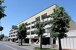OHANA COURT-1[4階]の外観
